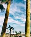 Tokio-Hotel-028-Tom-Kaulitz-Coachella.jpg