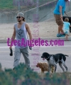 [Vie privée] 02.2014 Los Angeles - Tom promène ses chiens Thumb_Tom-Kaulitz-Walks-his-dogs-in-Los-Angeles_012A-WM-WM-WM-WM
